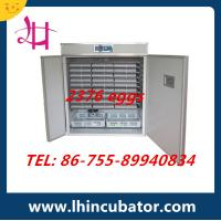 2015 Crazy Promotion Automatic Chicken Egg Incubator Hatching Machine (lh-13) Manufactures