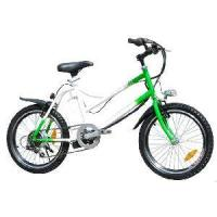 Electric Bicycle (SH-113-3) Manufactures
