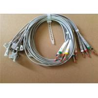 Philips / HP EKG Cable With 10 Lead Wires 2 Pin Connector Grey Color Manufactures