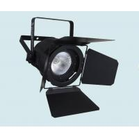 Dmx 100w Cob Led Par Light White / Warm White Color Stage Wedding Lights Fixture Manufactures