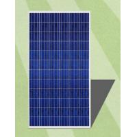 Domestic Multicrystalline Solar Panels 300 Watt Anti - Aging EVA Dark Blue Frame Manufactures