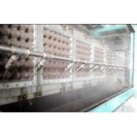 High Speed Paper Molding Machine, Egg Tray Molded Pulp Packaging Machinery Manufactures