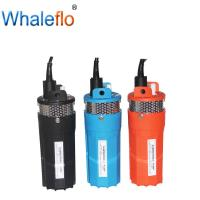 China Whaleflo deep well 12v/24v DC 6LPM solar powered submersible water pumps on sale