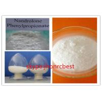 Muscle Building Nandrolone Steroid / Nandrolone Phenylpropionate NPP CAS 62-90-8 Manufactures