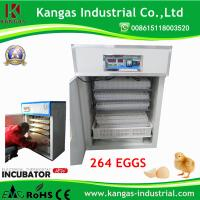 Quality (KP-5) 264 Manufacturing Fully Automatic Digital Quail Egg Incubator for Sale for sale