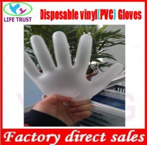 Powdered Vinyl Glove Powder Free Disposable Examination Vinyl Gloves Disposable Vinyl Gloves; Manufactures