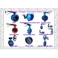 High Performance Double Flange Centerline Butterfly Valves DIN 3202 F4 / F5 Manufactures