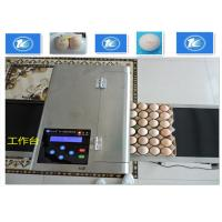High Resolution Egg Inkjet Date Code PrinterWith No Need Clean Nozzle Manufactures