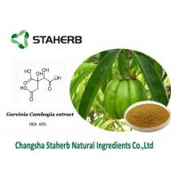 Quality Hydroxy Citric acid / Weight losing Garcinia Cambogia extract HCA for sale