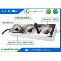 Quality Mushroom Farming Waterproof Ultrasonic Mister Fogger With Water Level Sensor for sale