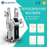 Best seller freeze machine cryolipolysis freezing fat body slimming weight loss machine Manufactures