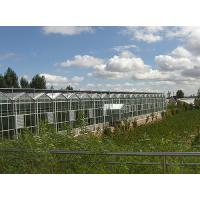 Water Proof Agricultural Glass Greenhouse , Diy Tomato Greenhouse Good Light Transmittance Manufactures