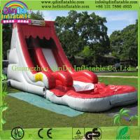 2015 giant inflatable water slide hot sale inflatable shark water slide for kids play Manufactures