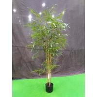 China Elegant Artificial Garden Plants Bamboo Tree Easy To Clean For Flower Arrangement on sale