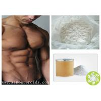 Anabolic Steroid Raw Hormone Testosterone Enanthate Powder for muscle growth Manufactures