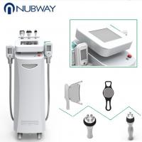 Best seller body shaping freeze machine cryolipolysis freezing fat Manufactures