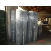 Galvanized Welded Wire Mesh Hot-Dipped Zinc Plating Iron Wire 20 / 22 BWG Manufactures