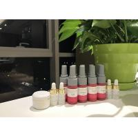 China Luxury Chic - makeup Lips Permanent Makeup Kit Of Pure Plant Liquid Pigment on sale