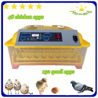 Christmas promotion price $39 full automatic mini chicken egg incubator of YZ8-48 Manufactures