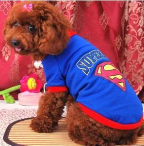 superman Summer Dog Cloth/Apparel Manufactures