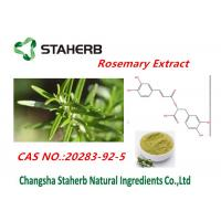 90% Rosmarinic Acid Rosemary Leaf Extract For Cosmetic Cas No.20283-92-5 Manufactures
