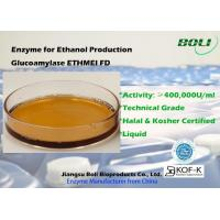 China High Concentrated Enzyme Activity Glucoamylase Ethmei Fd For Ethanol Production on sale