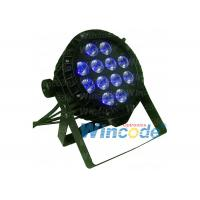 China Party Light Event Illumination LED Light 12*10w Par Can IP65 Curtain Table Color Wash on sale