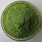 100% Natural Alfalfa Grass Powder Purify Liver , Improving Digestion Manufactures