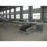 XGJ-DN Type Fruit Grading Machine (Computer Controlled) Manufactures