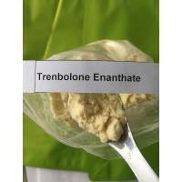 Pharma Grade Trenbolone Powder Cas 10161-33-8 Trenbolone Enanthate Injection Manufactures