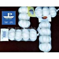 Quality Chinese Pure White Garlic for sale