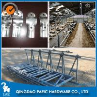 Automatic Releasing Locking Feed Barriers / Dairy Cow Headlock Device Manufactures