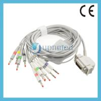 Quality Siemens Hellige10 lead EKG cable with leadwires; Reusable EKG Cable with leadwires for sale