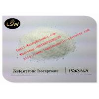 China 99% White Raw Steroids Powder Testosterone Anabolic Steroid Testosterone Isocaproate CAS 15262-86-9 For Weight Loss on sale