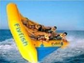 Exciting Inflatable Flying Fish Boat for Entertainment , Easy To Set Up Manufactures