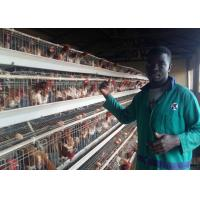 China Farming Poultry Chicken Cages Automatic Chicken Layer Cage With Long Life on sale