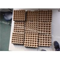 CE Certificated Egg Box Making Machine Rotary Forming / Multi Layers Drying Model Manufactures