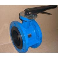 Quality DN250 10 Inch Butterfly Check Valve Fusion Bonded Epoxy ASTM For Water,125LB,WATER for sale