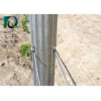 4M Galvanised Steel Vineyard Posts With W - Shaped Section Silver Color Manufactures