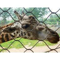 Buy cheap Durable Stainless Steel Zoo Mesh , animals cage Wire ropeMesh For Giraffe from wholesalers