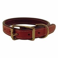 Quality 5 Colors beautiful dog Collar Crocodile GCDC010-1 for sale