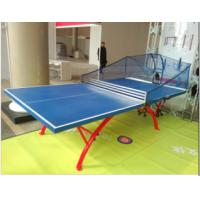 China professional big rainbow ping-pong table tennis table on sale