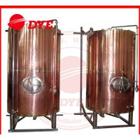 DYE Semi-Automatic Mini Bright Beer Tank For Brewery 1 - 3 Layers Manufactures