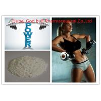 58-20-8 Body Building Testosterone Anabolic Steroid , Healthy Testosterone Cypionate Steroid