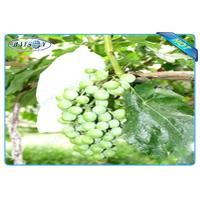 OEM Disposable Nonwoven Fruit Protection Bag For Grape Size 20 cm 22cm Manufactures