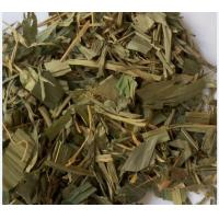Online chinese herb store Lophatherum gracile Brongn leaves Common Lopatherum Herb Dan zhu ye Manufactures