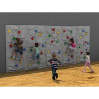 5 - 12 Years Old Kids Climbing Wall Outdoor With Plastic Slide Manufactures