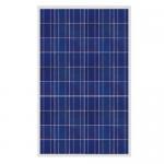 Polycrystalline  solar panel 220W Manufactures