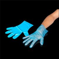 Wholesale gloves transparent and good quality cheap price plastic glove disposable clear pe glove Manufactures