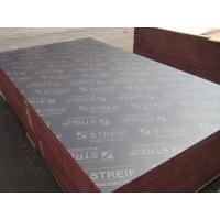 18mm Brown Film Faced Plywood for more than 10 times Manufactures